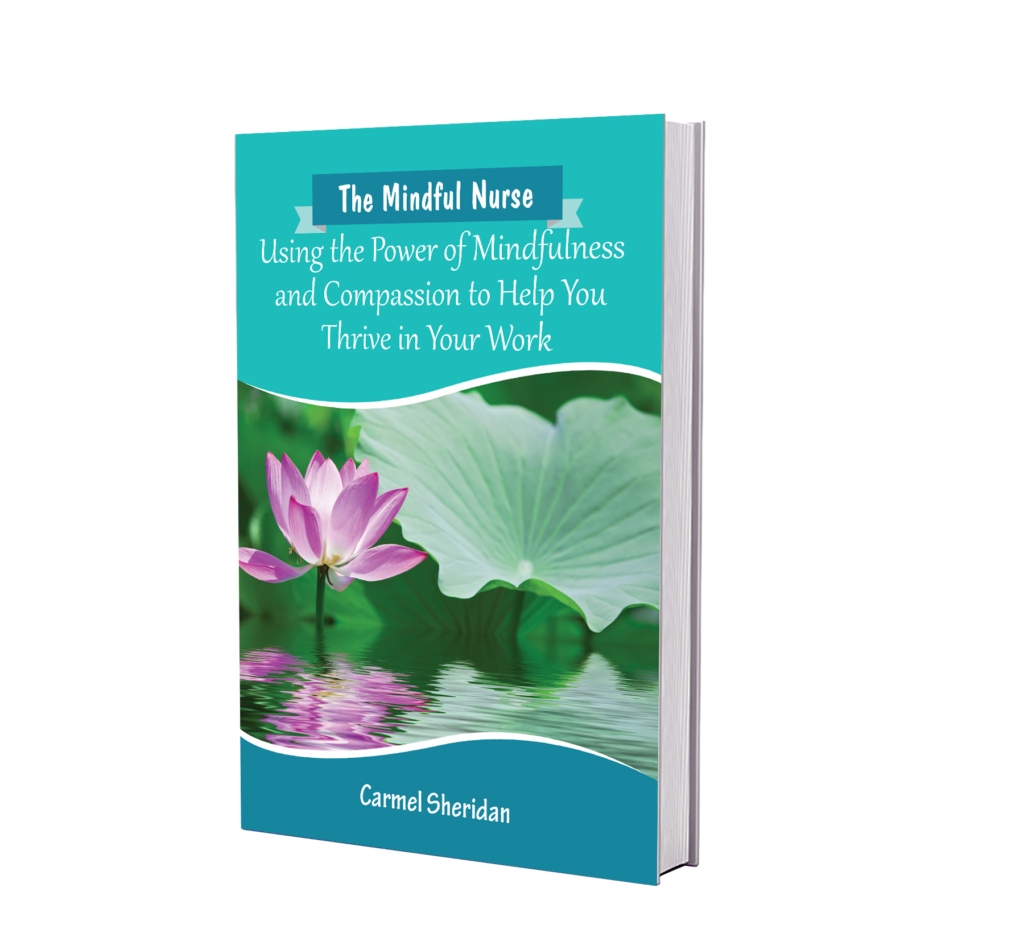 Mindfulness Galway Book